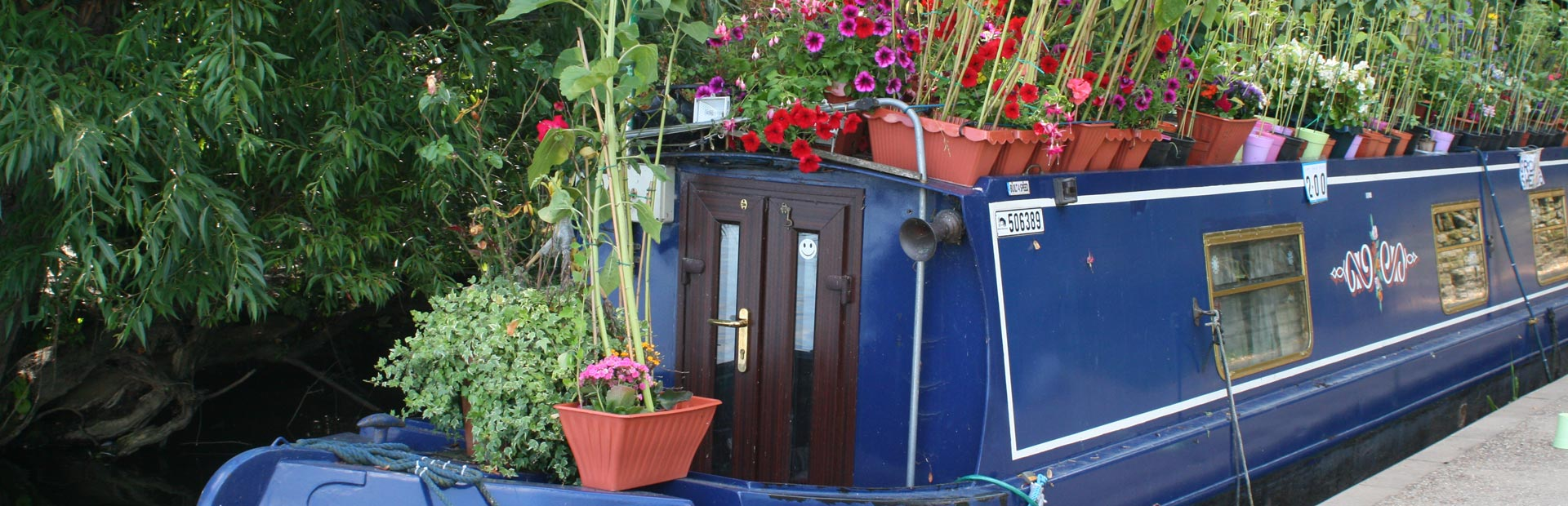Blue house boat with flowers in Windsor